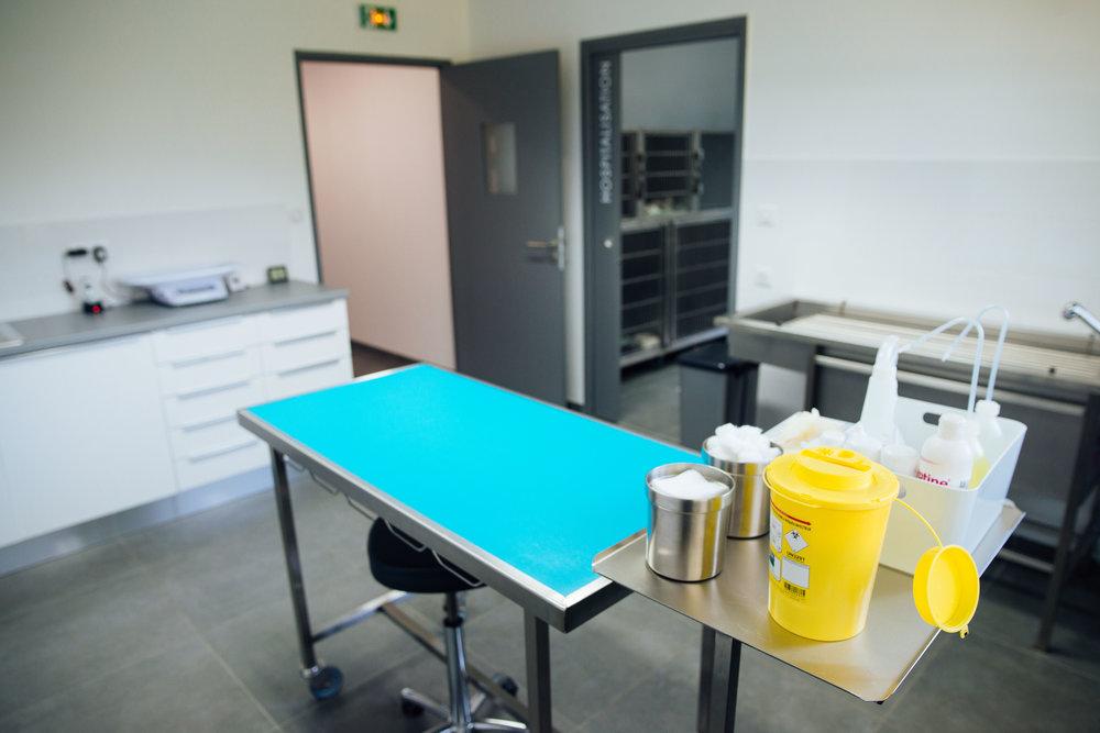 Clinique Véto-61.jpg