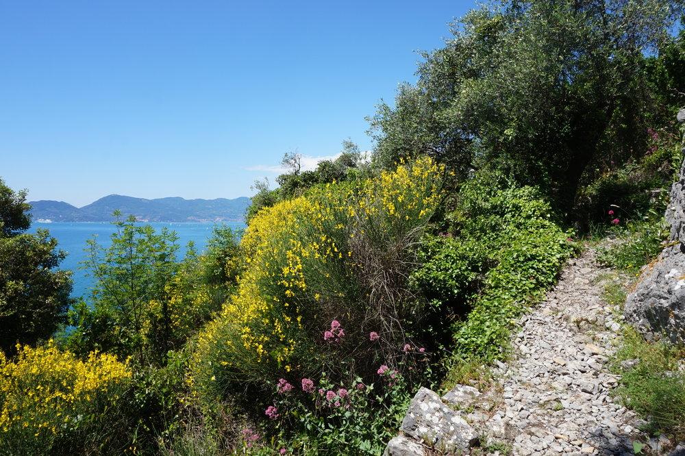 Walking Tours in Tuscany