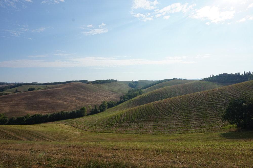 Walk in Tuscany, Via Francigena