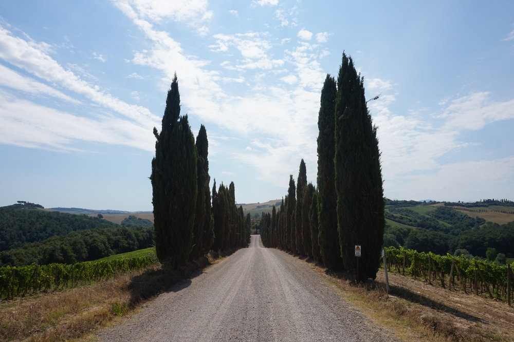 Discover Tuscany