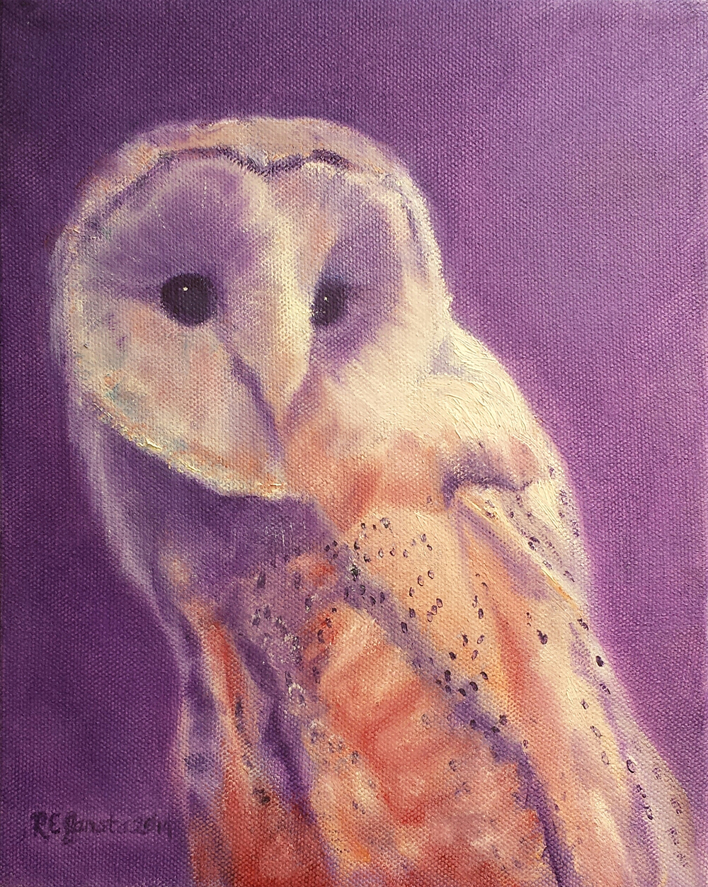Barn Owl,  oil on canvas