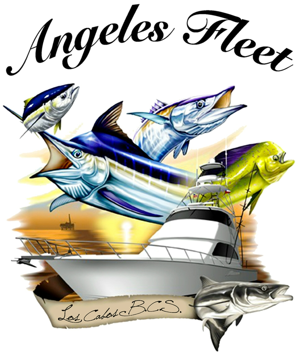 Angeles Fleet Fishing San Jose del Cabo