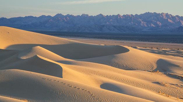 mojave-trails-national-preserve.jpg