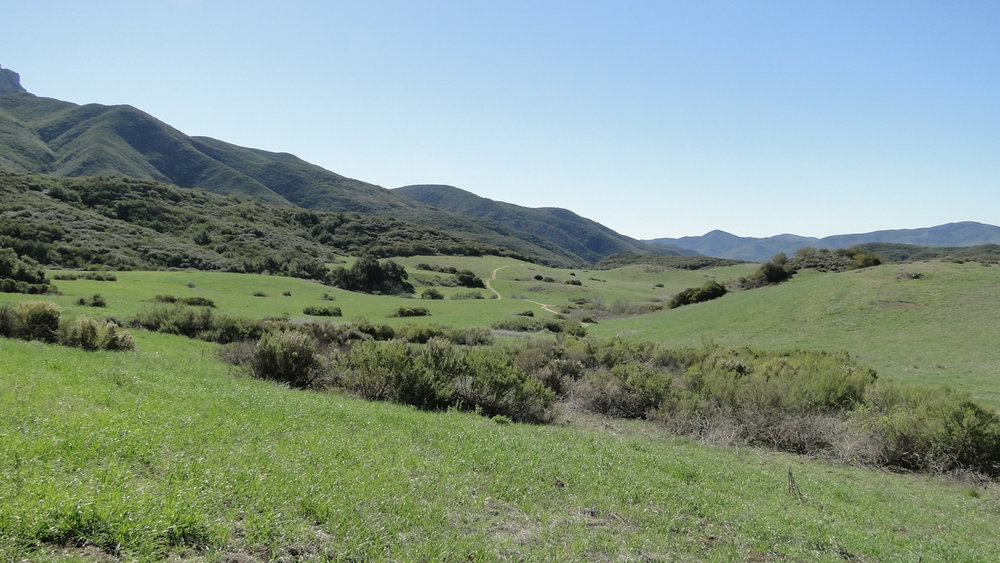PEAK: Tri-Peaks - DIFFICULTY: 4.5/5SCENERY: Open ocean and sweeping views of the rolling Santa Monica Mountains.FUN FACT:The trail begins at Satwiwa, a Native American cultural site. The area was burned by a fire in 2013 but several wet winters have quickly helped re-green the landscape.