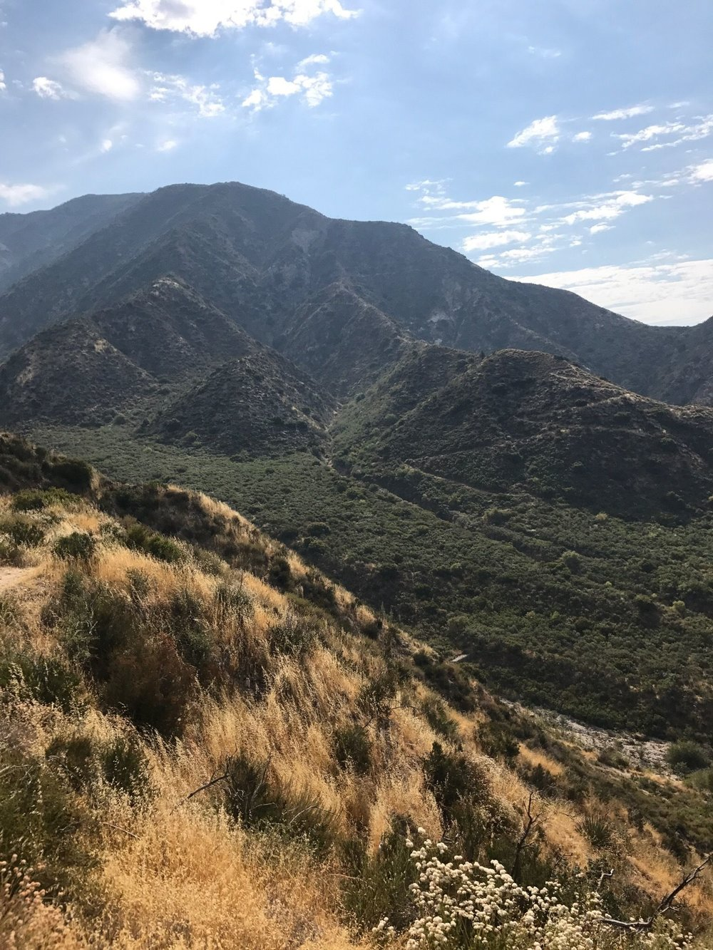 PEAK: Dunsmore Canyon - DIFFICULTY: 3/5SCENERY: Plenty of rolling California mountains, complete with wildflowers, desert vibes, and streams. FUN FACT: Our trail is kept fresh and clean by the Glendale Parks and Open Space Foundation, whose mission is to provide plenty of parks and trails for the public to enjoy!