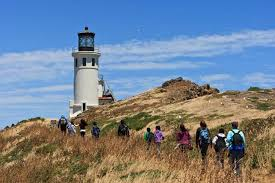 PEAK: Anacapa Island - Get stoked! First time Peaks is hitting this island!DIFFICULTY: 1/5SCENERY: Panorama ocean views, cliffs, sea caves!FUN FACT: The island supports 265 species of plants, including two found only on Anacapa and 20 found only on the Channel Islands.