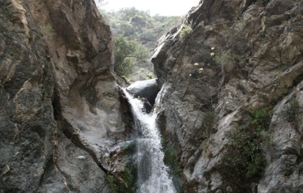 PEAK: Eaton Canyon Falls - DIFFICULTY: 2/5SCENERY: A waterfall with water?! (hopefully)FUN FACT:75% of the human brain is water and 75% of a living tree is water.