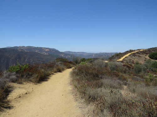 PEAK: Trailer Canyon Trail to Temescal Peak - DIFFICULTY: 3/5SCENERY: Breathtaking views of the Pacific and nearby Topanga State ParkFUN FACT: Topanga State Park is located entirely within LA city limits and is considered the world's largest wildland within a city!
