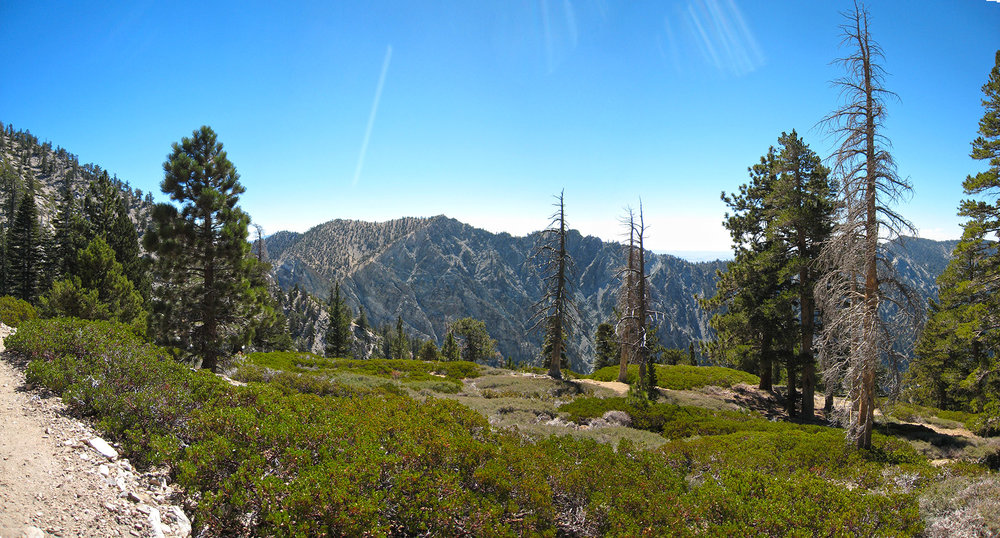 PEAK: Mt. San Gorgonio - The highest peak south of the Sierra Nevada in California. Over two days we'll cover 19 miles of trail and 5500 feet of elevation gain.DIFFICULTY: 4.5/5SCENERY: Highest point in SoCal = totally unimpeded views of all of SoCal.FUN FACT: Mt. San Gorgonio is part of the SoCal six pack of peaks (Google it!).