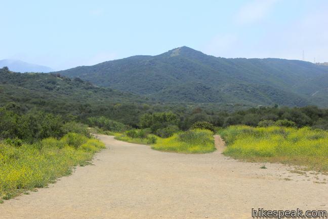 Los_Robles_Trail_IMG_0987.jpg