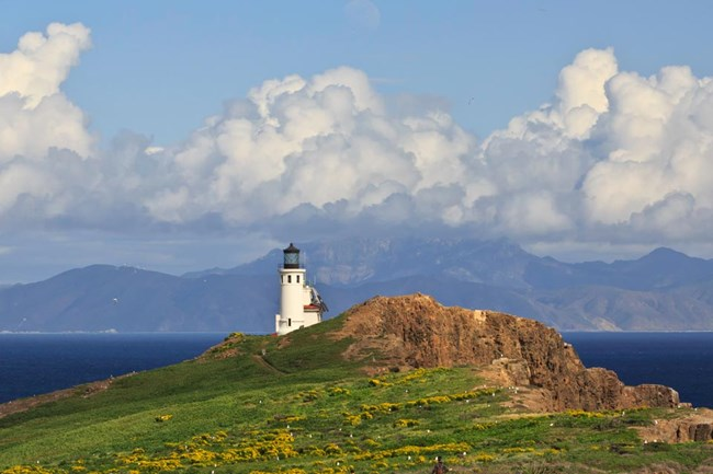 PEAK: Anacapa Island - DIFFICULTY: 1/5SCENERY: Panoramic ocean views that will blow you out of the water.FUN FACT: The island supports 265 species of plants, including two found only on Anacapa and 20 found only on the Channel Islands!