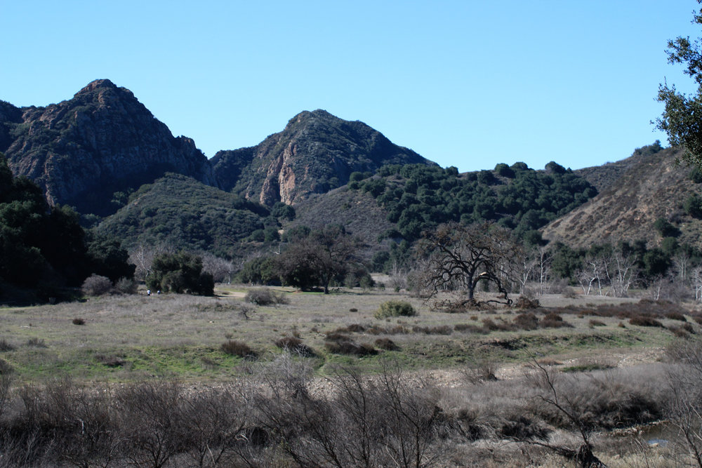 PEAK: MALIBU CREEK STATE PARK - DIFFICULTY: 3/5SCENERY: Malibu Creek State Park and the surrounding area is still in recovery from the Woolsey fire, however the recent rainfall has brought out the greens and yellows of the canyon quite nicely.FUN FACT: Previous to being opened to the public in 1976, the park was used extensively to film numerous movies and TV shows, such as Planet of the Apes and M*A*S*H!