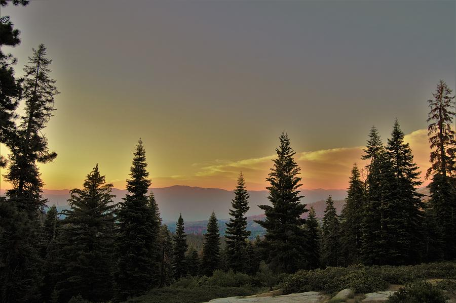 sequoia-national-forest-sunset-brittany-perry.jpg