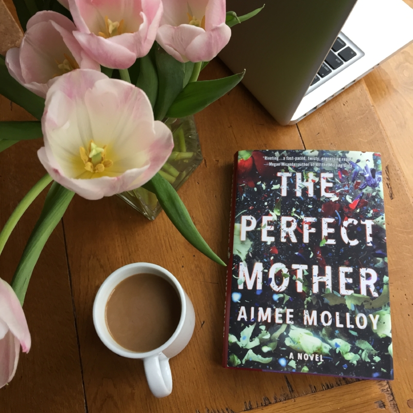 Book Review for THE PERFECT MOTHER by Aimee Molloy