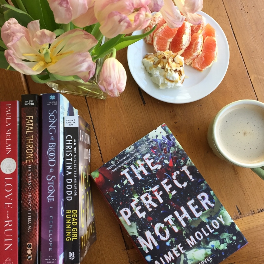 Book Review for THE PERFECT MOTHER by Aimee Molloy (2)