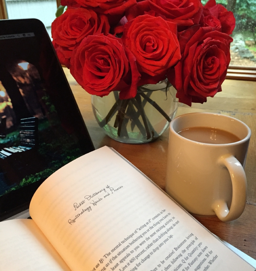 Book Review for YOUR SECOND LIFE BEGINS WHEN YOU REALIZE YOU ONLY HAVE ONE  by Raphaëlle Giordano