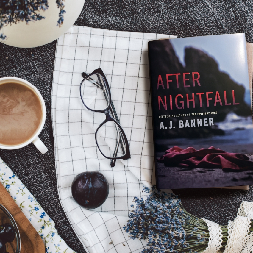 Book Review for AFTER NIGHTFALL by A.J. Banner
