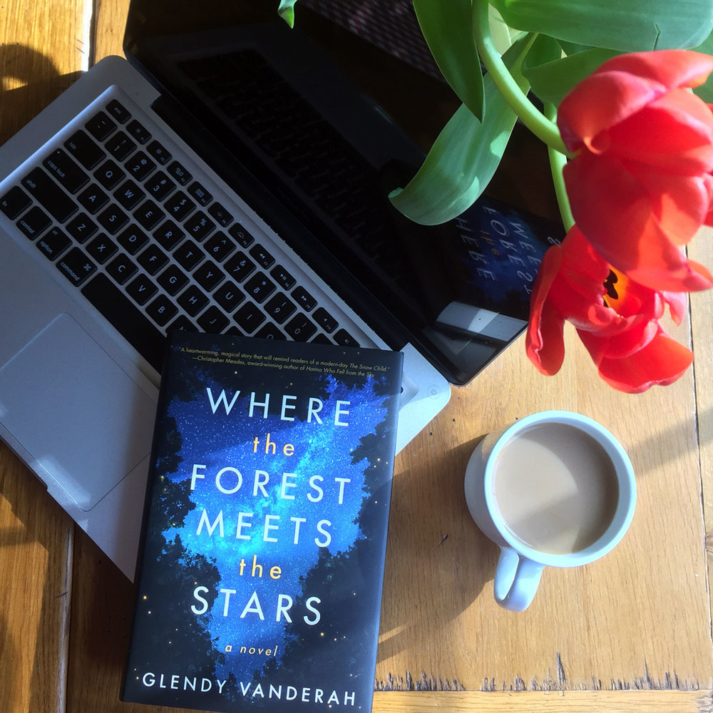 Book Review for WHERE THE FOREST MEETS THE STARS by Glendy Vanderah
