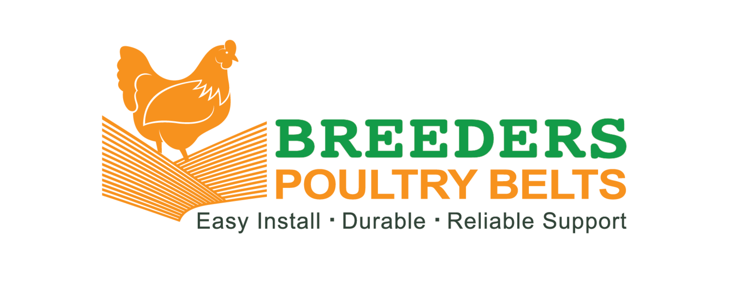 Breeders Poultry Belts - Egg Belts