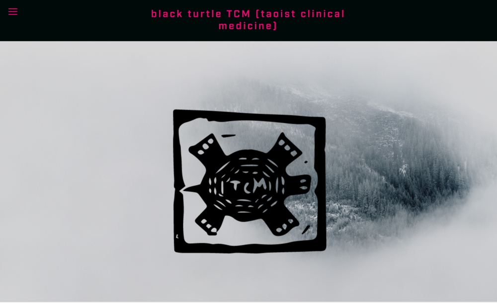 Screen Shot Black Turtle TCM.png