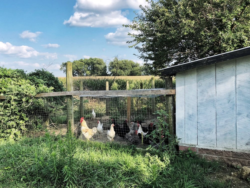 With this house, I am told the chickens are negotiable.