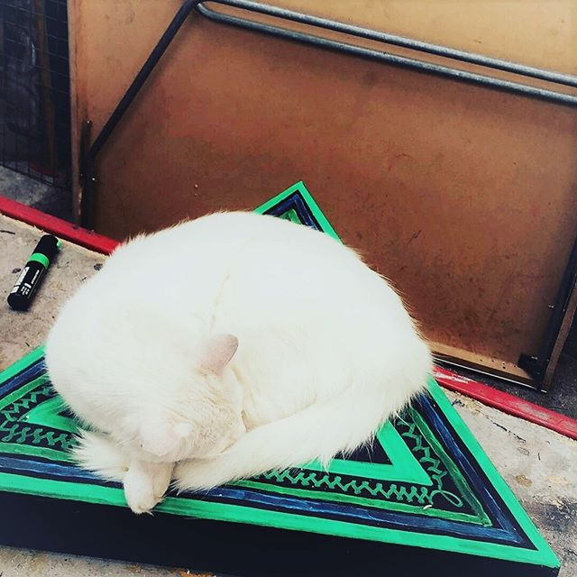When the house cat blesses your new painting by napping on it.  Photo: Alice Hermouet Model: Foozle Edit: Moi