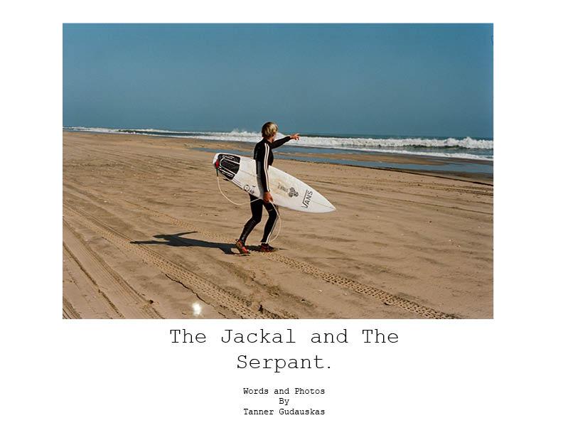 the jackal and serpant4.jpg