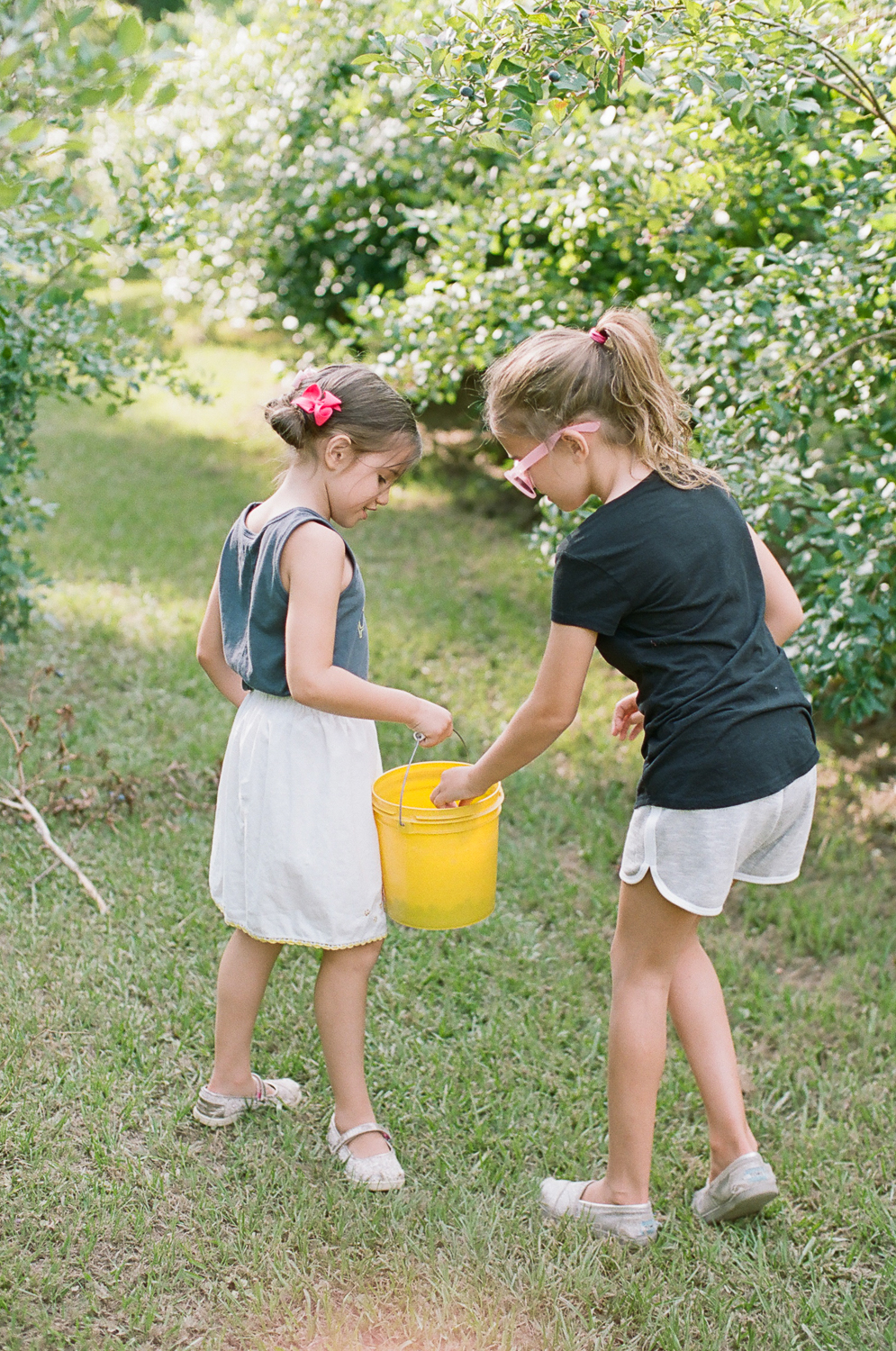 Summer Blueberry Picking Kids on Film Mississippi-12.jpg