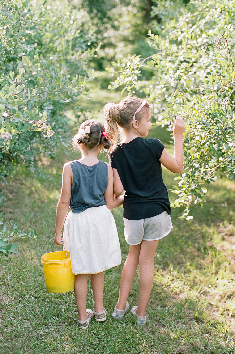 Summer Blueberry Picking Kids on Film Mississippi-17.jpg