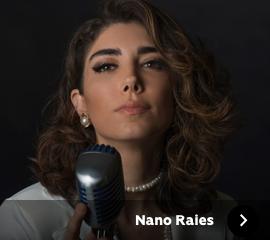 NanoRaies.png