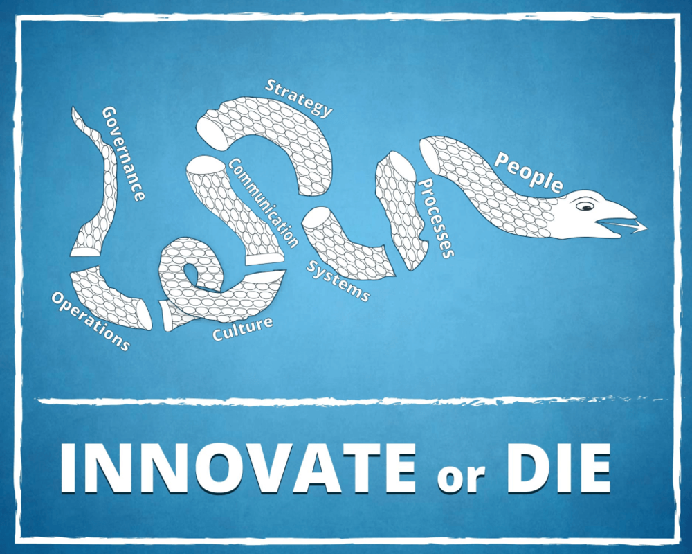 innovate or die.png