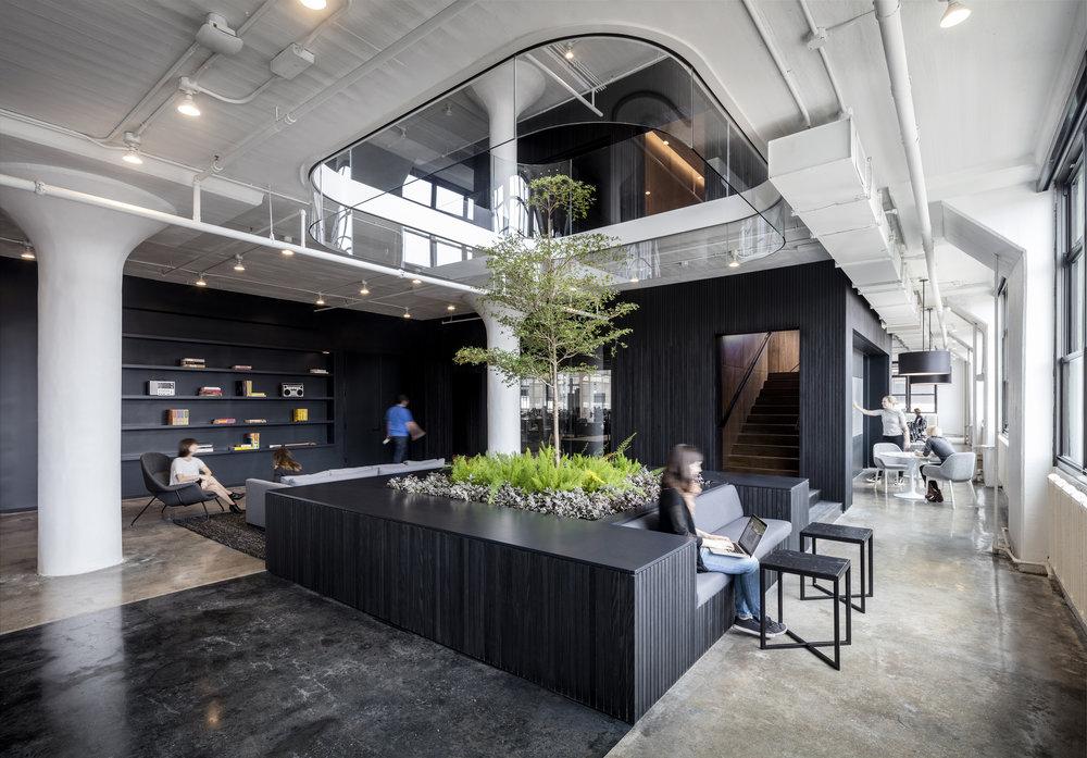 Squarespace   Architecture + Information