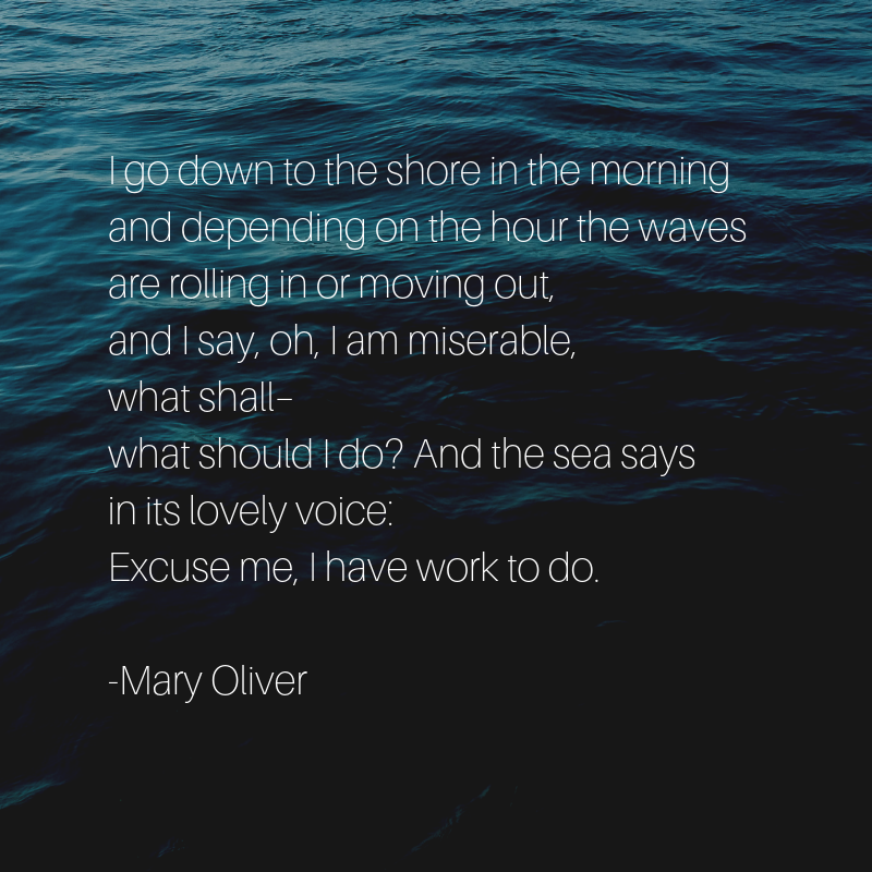 Mary Oliver, 1935-2019