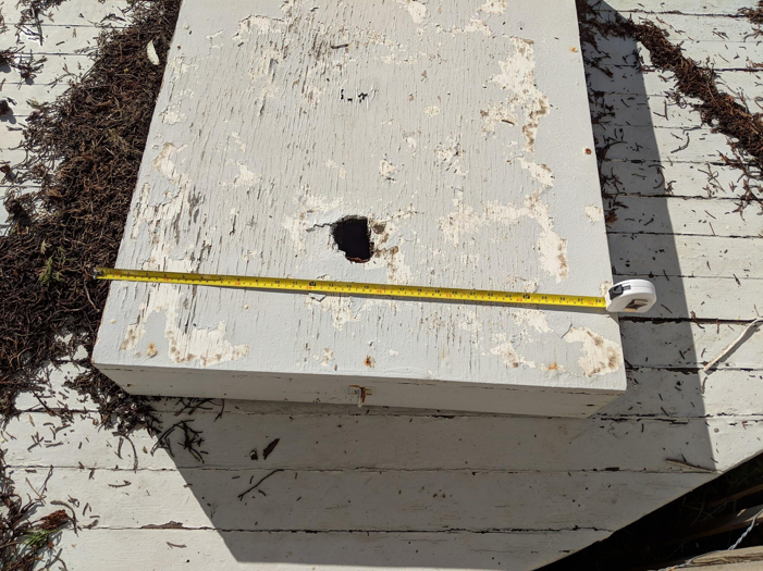 The cover for the access hole of a cistern, tape measure for scale.