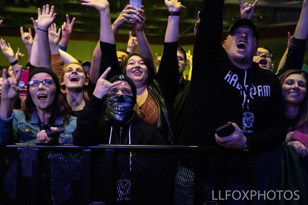 LLFOXPHOTOS-0544.jpg