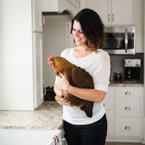 chicken photo layout-02.jpg