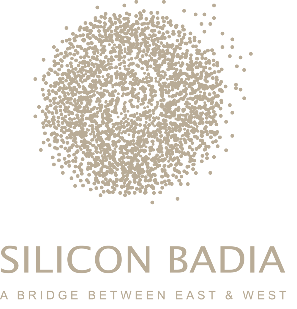 silicon_badia.png