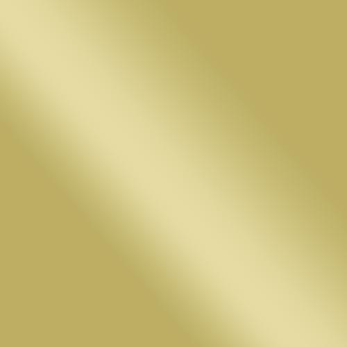 trump-website.png