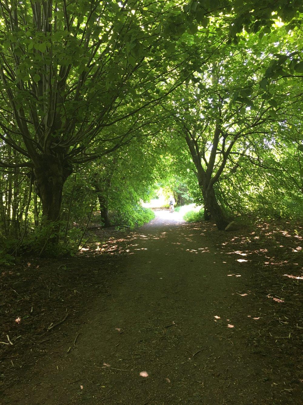 Reierskogen på Jeløy. Søndagstur i mai 2018