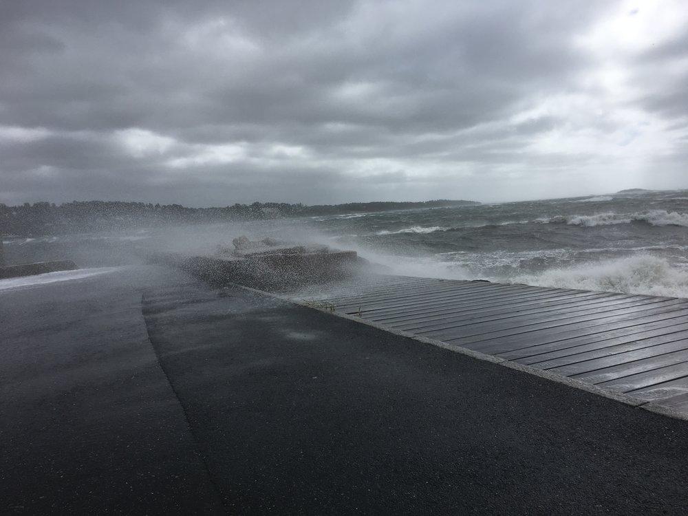 Det ble målt storms styrke i vindkastene nede i småbåthavna den 10. august. Flere trær bukket under i distriktet