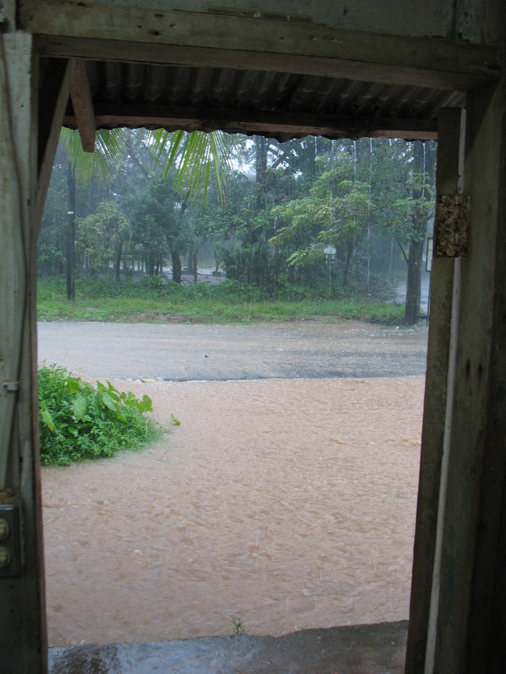 Rainy season as viewed from inside the shop.