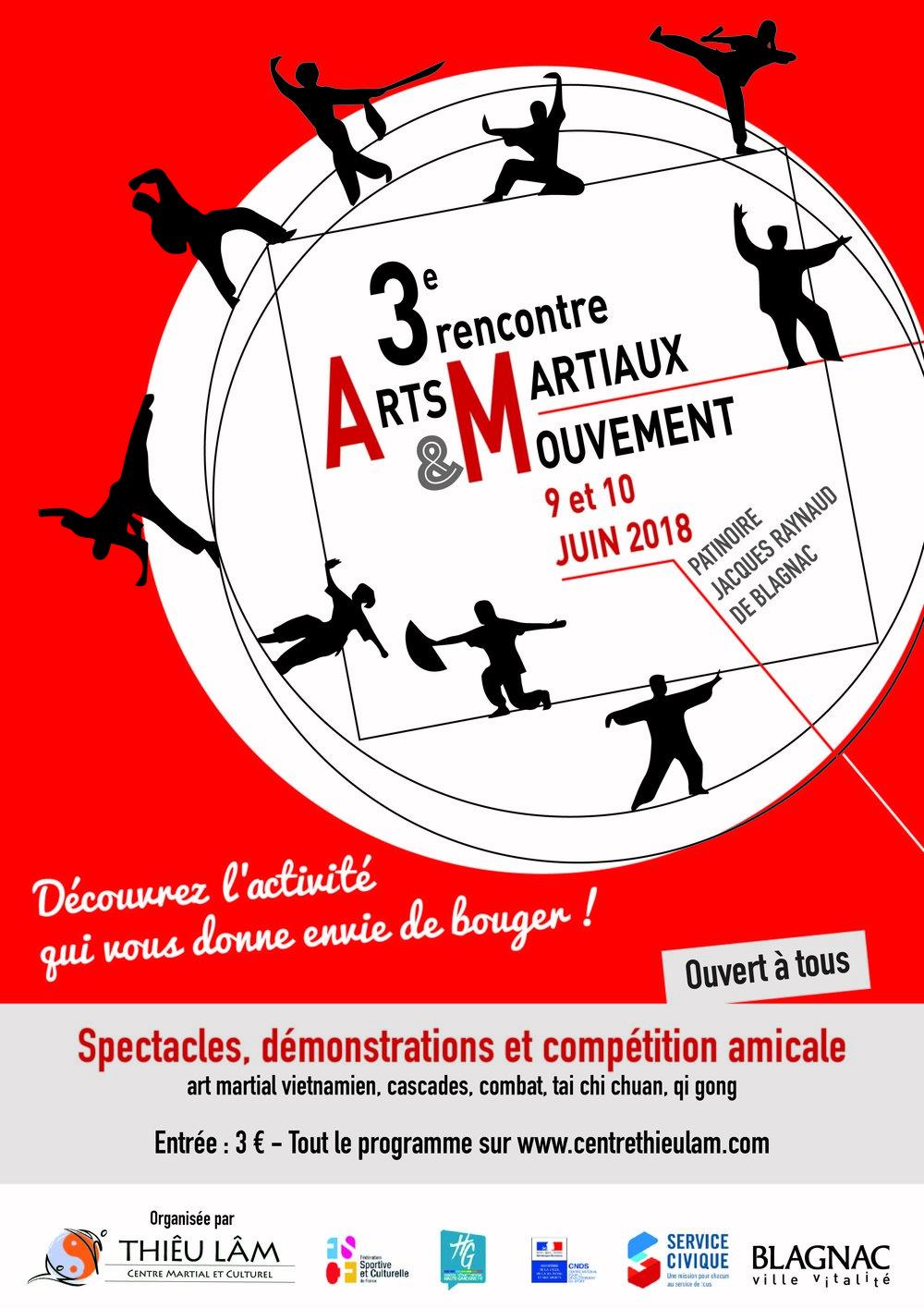 3e Rencontre des Arts Martiaux et du Mouvement à Blagnac.