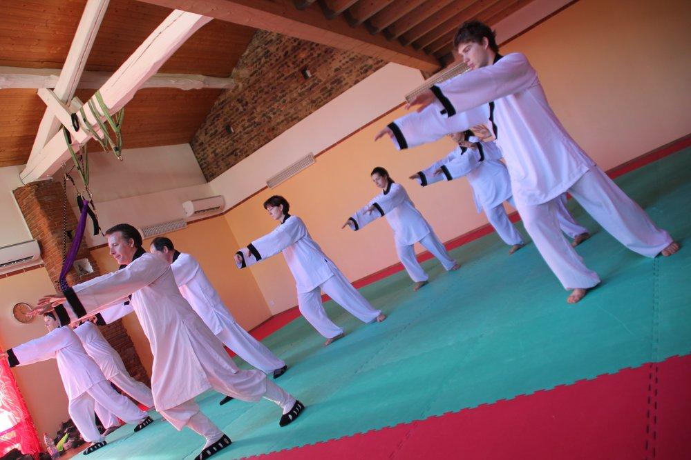 Activités Qi Gong et Tai Chi à Pibrac et à Aussonne