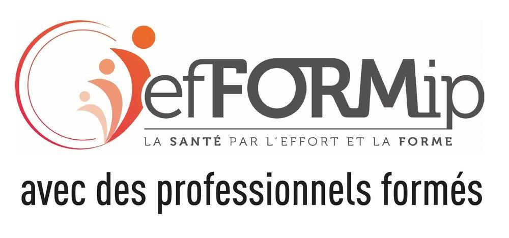 logo_efFORMIP.jpg