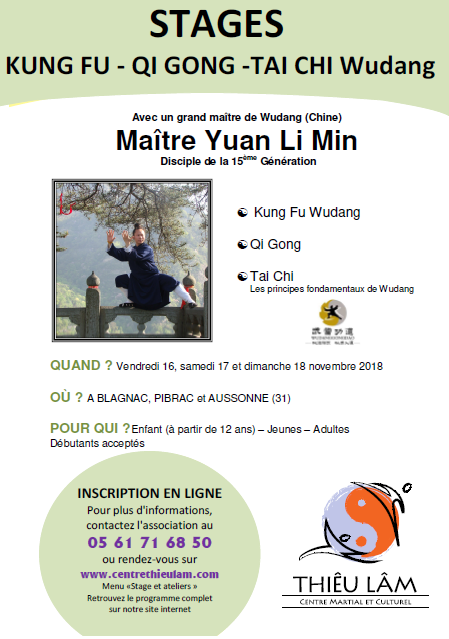 "Affiche du stage ""Kung Fu, Qi Gong et Tai Chi Wudang""."