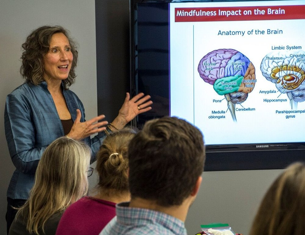 Learn the necessary skills to bring meditation to your clients - Learn the nuts and bolts of how to lead skillful and safe meditations.The Mindful Boston pathway brings you through intermediate level and towards advanced skills within a community of collaborative practitioners.