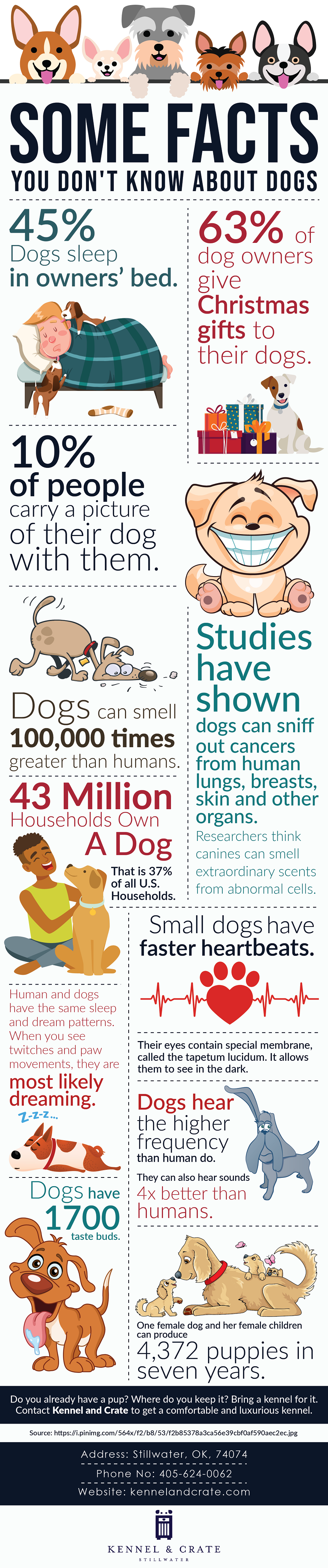 Unknown facts on dogs
