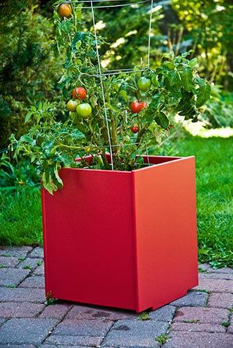 planter_mondo_single_6354.jpg