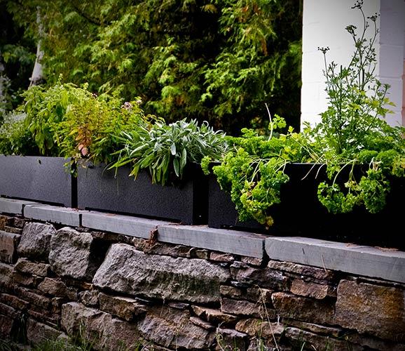 planter_rectangle_8_5837-.jpg