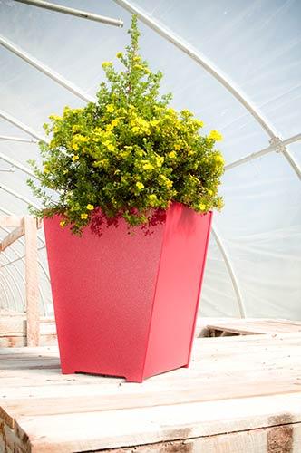planter_taper_2387.jpg